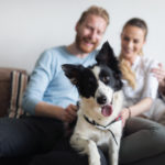 apartment family with happy dog